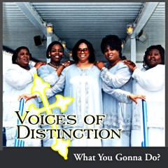 Listen | Buy - The Voices of Distinction - What You Gonna Do?
